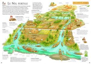 Nil_fertile